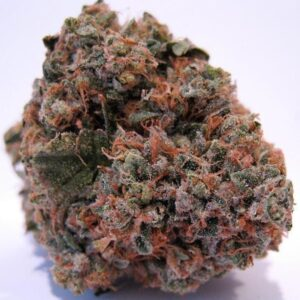 buy og kush online with overnight delivery